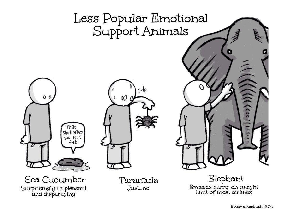 Less Popular emotional support animals cartoon